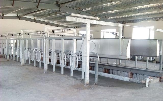 新東機械山東某客戶并列式擠奶機安裝現場