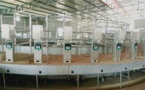 我公司在印度48位转盘式挤奶机顺利
