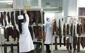 山东某牛肉加工厂牛肉烘干客户现场