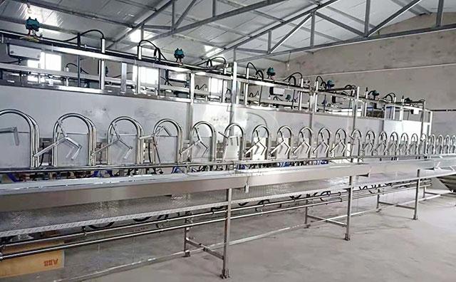 还在用手挤羊奶?新东机械奶山羊挤奶机投产了!