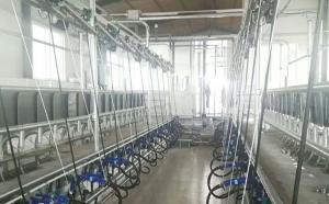 新东机械奶山羊并列式挤奶机客户完工现场