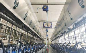 SCR并列式奶牛挤奶厅河北客户安装