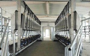 新疆28位SCR并列式挤奶机顺利完成安装调试