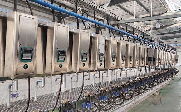 SCR并列式奶牛擠奶機